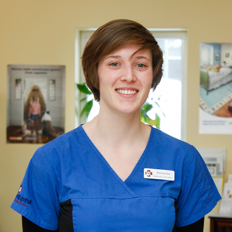 Amanda Rowlands Veterinary Assistant at Vetcetera animal hospital and veterinarian in Bedford Halifax Nova Scotia