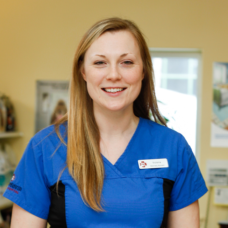 Victoria Burgess Veterinary Assistant at Vetcetera animal hospital and veterinarian in Bedford Halifax Nova Scotia
